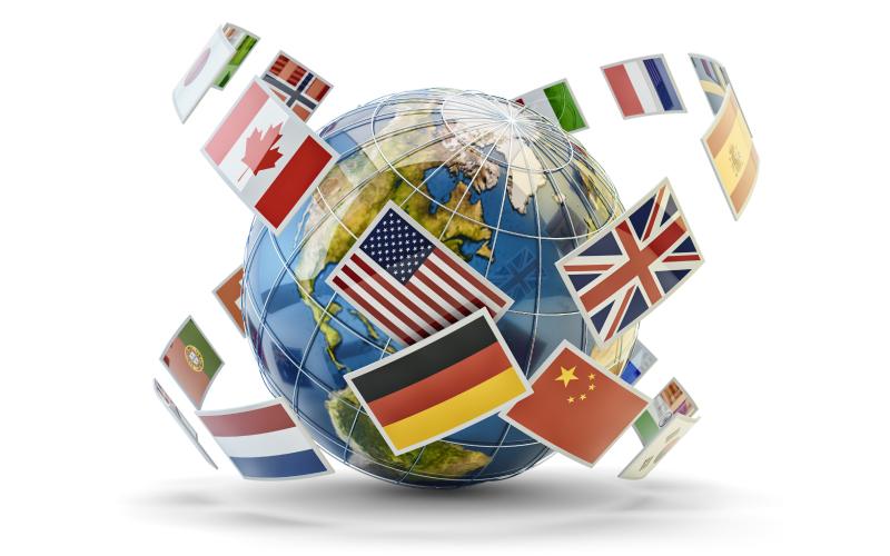 insurance-translator-interpreter